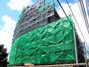 Scaffolded And Clad